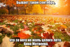 Бывает такой сентябрь, что за него не жаль целого лета. Анна Матвеева.