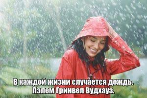 В каждой жизни случается дождь. Пэлем Гринвел Вудхауз.